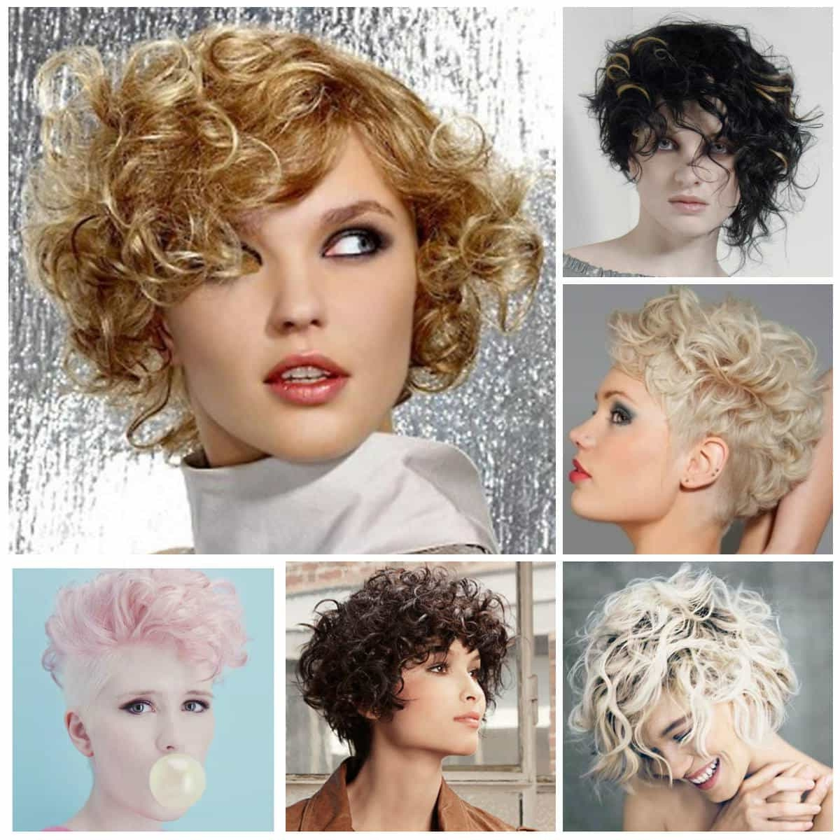 Short Curly Haircuts For Long Faces – Short And Cuts Hairstyles Inside Pixie Haircuts With Large Curls (View 18 of 20)