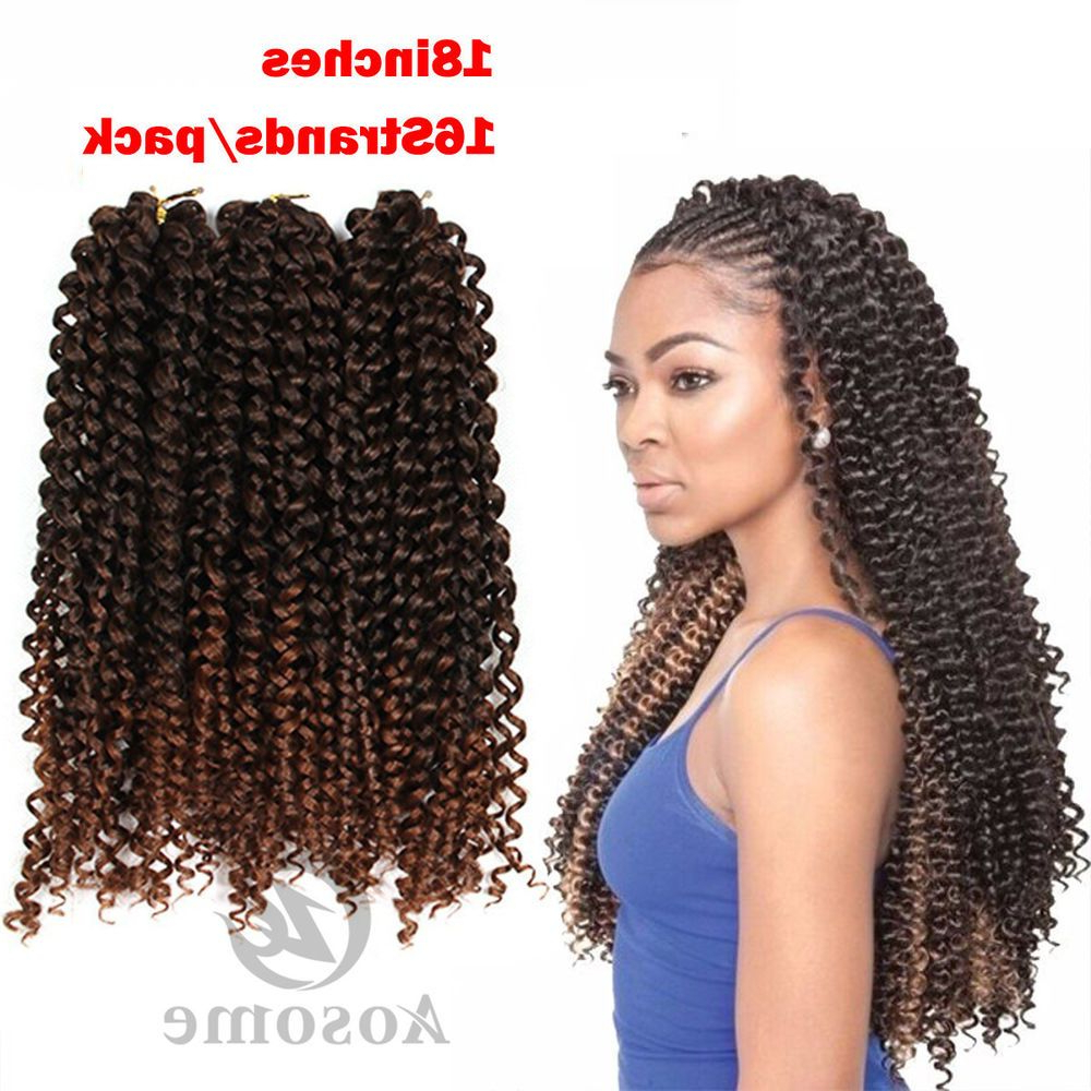 Widely Used Side Braided Curly Mohawk Hairstyles Intended For 8Pack Freetress Synthetic Water Wave Bulk Braid Crochet (View 19 of 20)