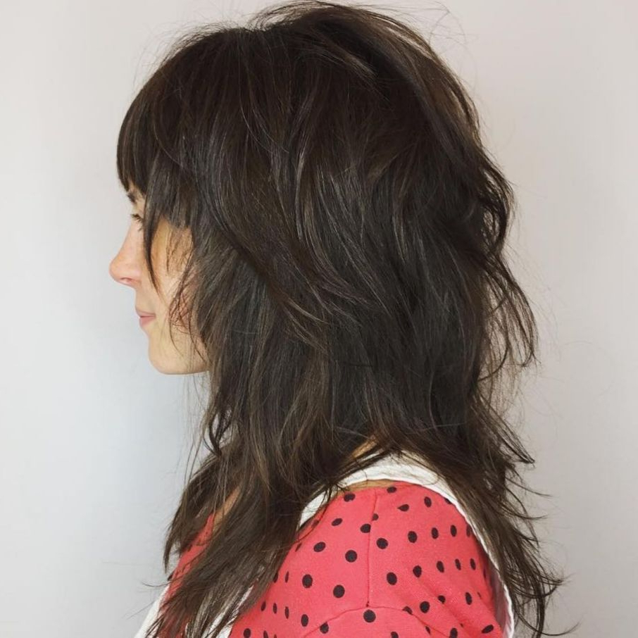 60 Most Universal Modern Shag Haircut Solutions In 2019 In Best And Newest Long Wispy Brunette Shag Haircuts (Gallery 6 of 20)