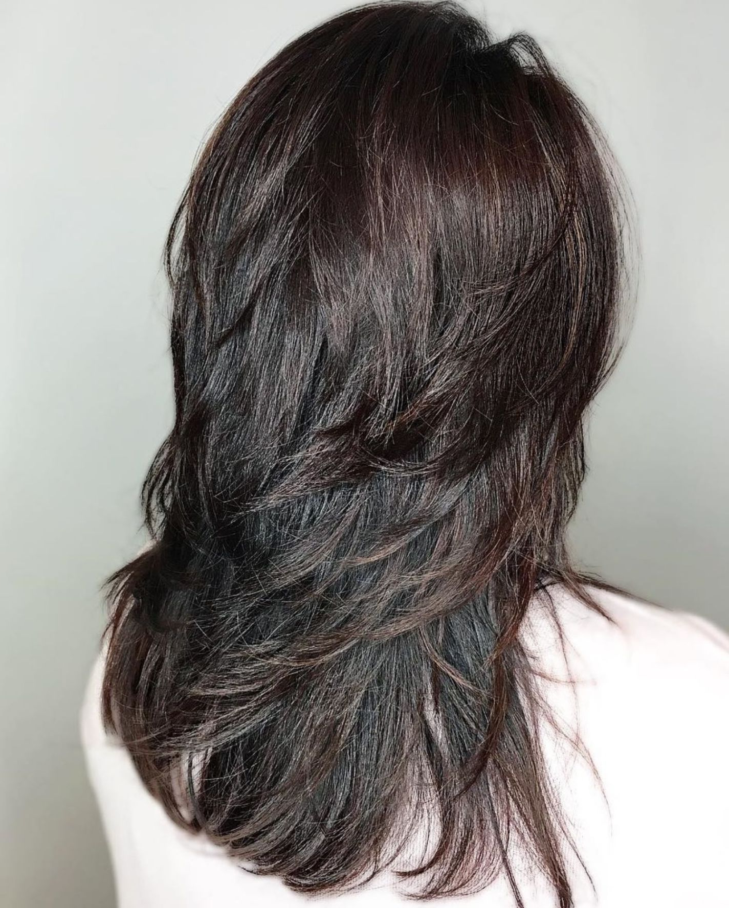Featured Photo of Shiny Black Haircuts With Flicked Layers
