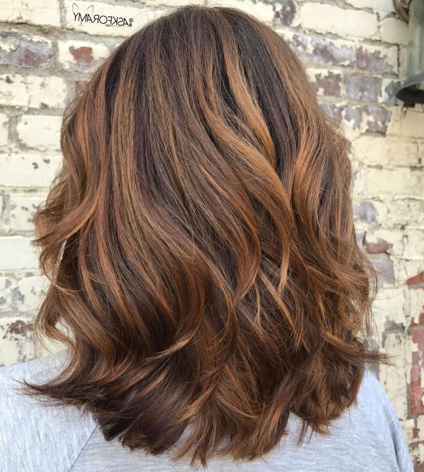Pin On Beauty & Hairstyles In Newest Warm Brown Hairstyles With Feathered Layers (View 14 of 20)