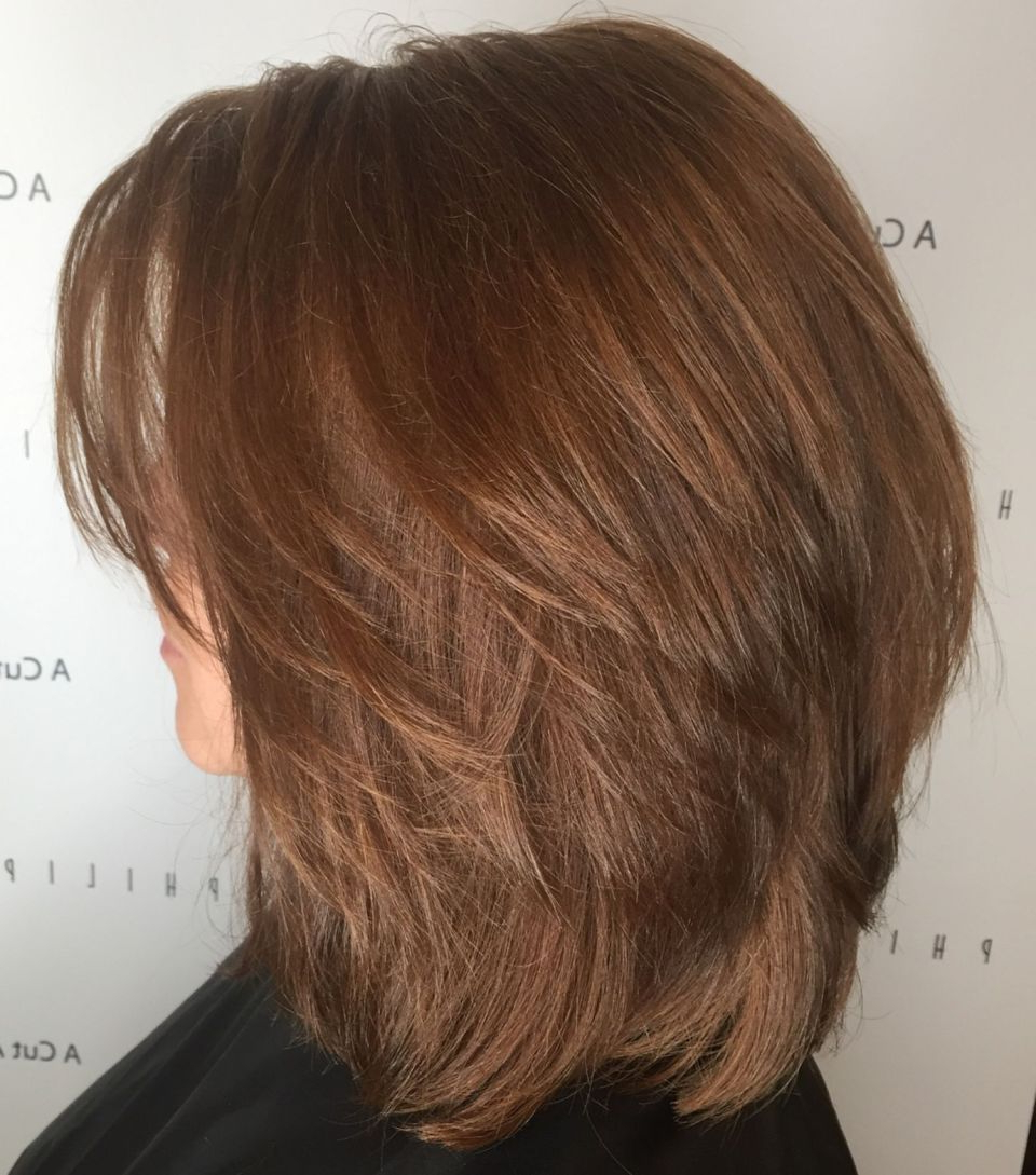 Featured Photo of Sleek Layered Haircuts For Thick Hair