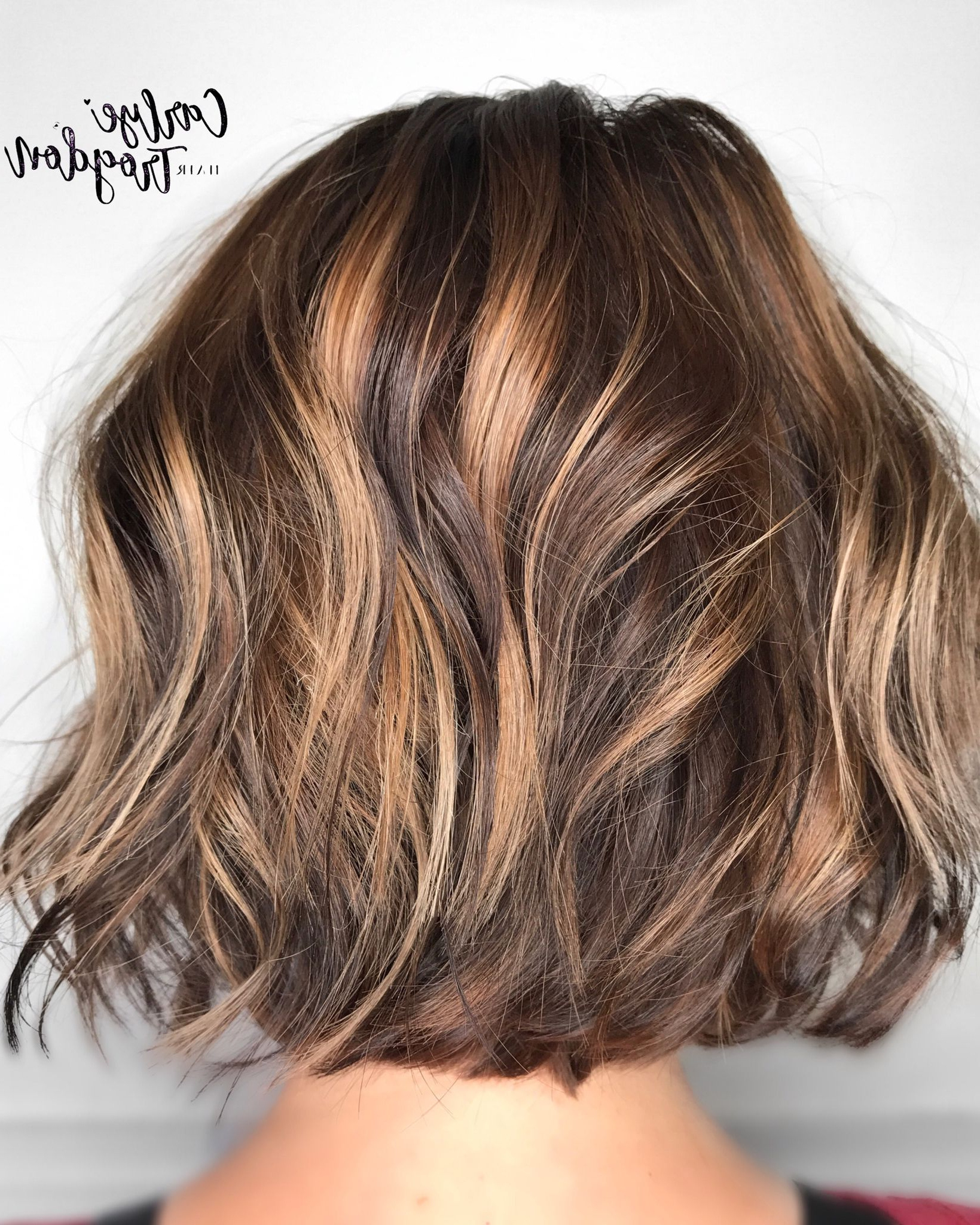 Featured Photo of Longer Textured Haircuts With Sun Kissed Balayage