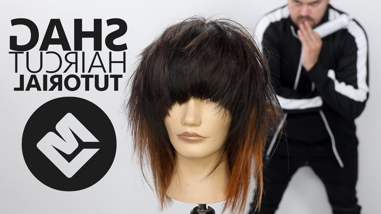 Shag Haircut Tutorial Fall 2018 – Matt Beck Haircutting Tutorial – Scene Haircut Within Matte Shaggy Bob Hairstyles (View 10 of 20)