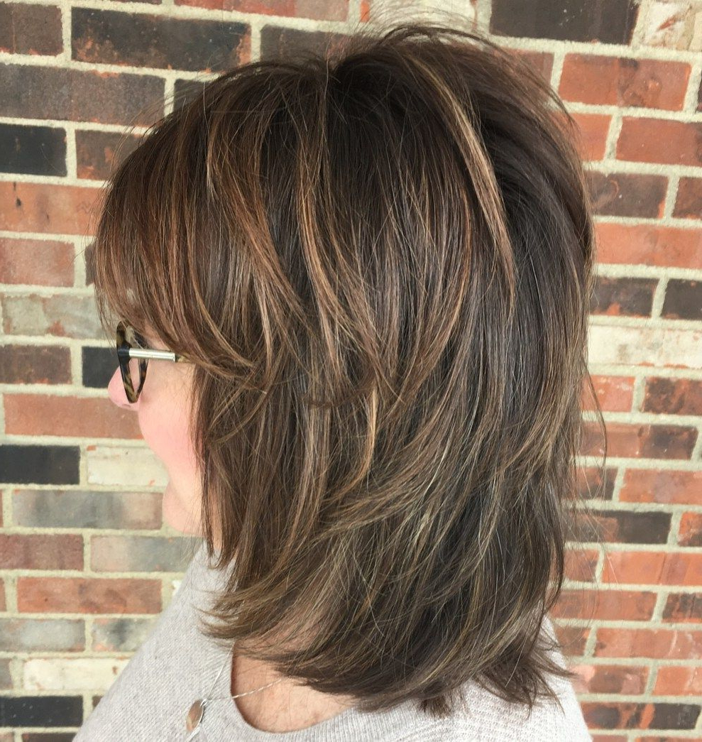 Featured Photo of Long Feathered Shag Haircuts For Fine Hair