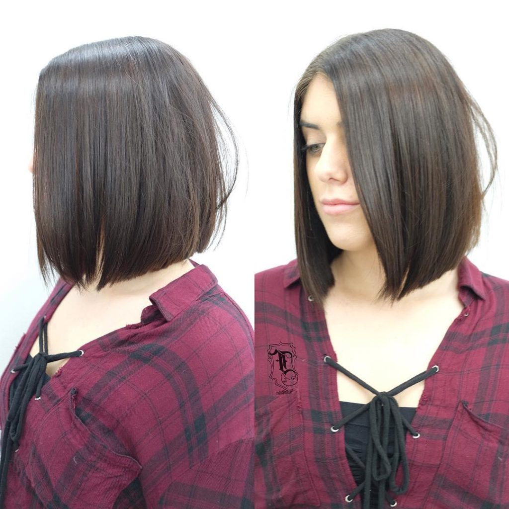Women's Long Sleek Bob With Brunette Color Medium Length Pertaining To Sleek Blunt Brunette Bob Hairstyles (View 17 of 20)