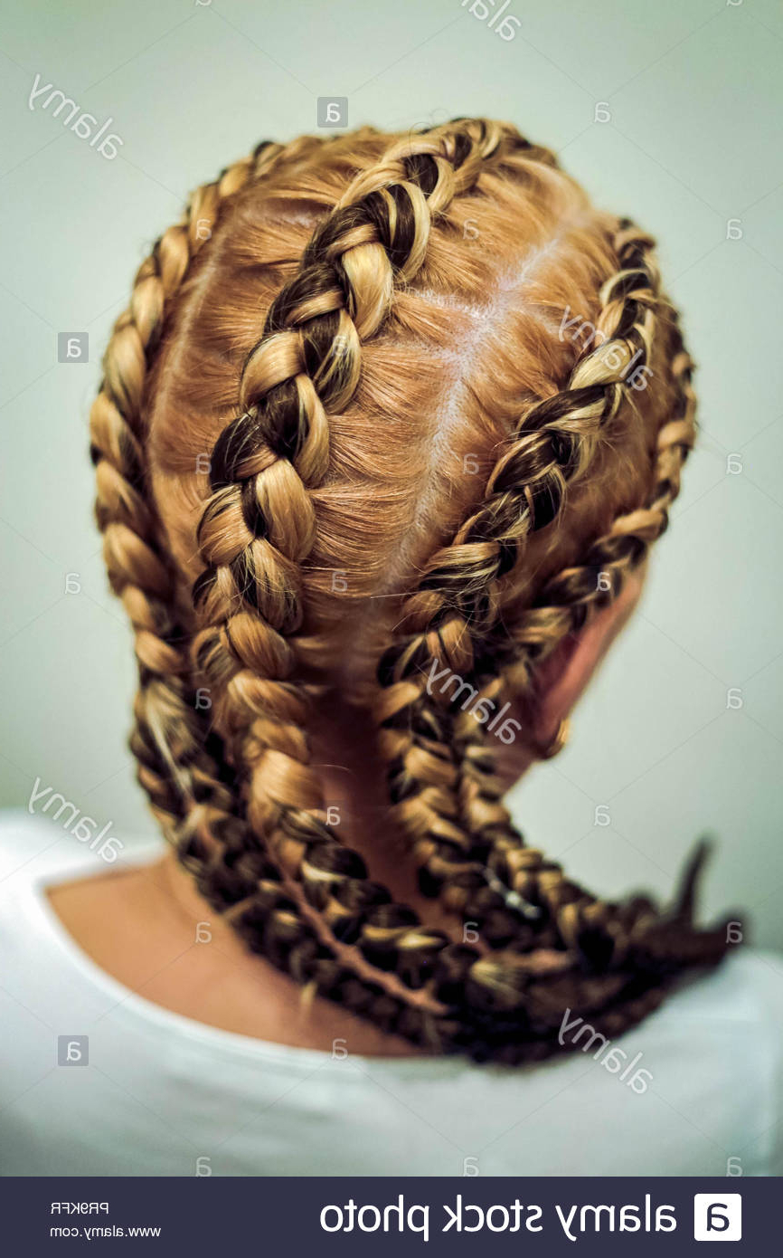 African Hair Style On European Hair, Thick And Thin Plaits Intended For Current Thick Plaits And Narrow Cornrows Hairstyles (View 14 of 20)