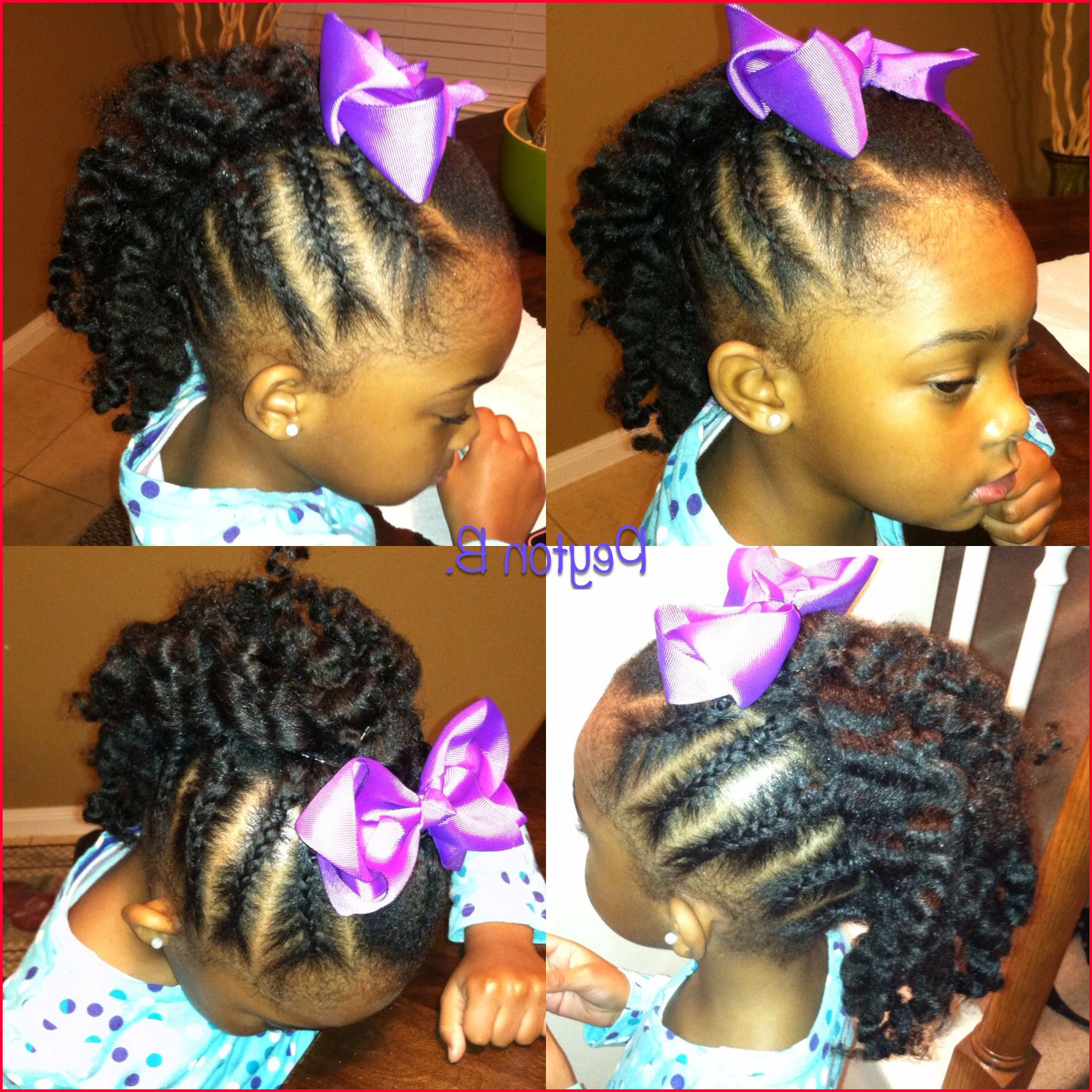 Beautiful Natural Mohawk Hairstyles Photos Of Braided Intended For Most Current Braided Frohawk Hairstyles (View 2 of 20)