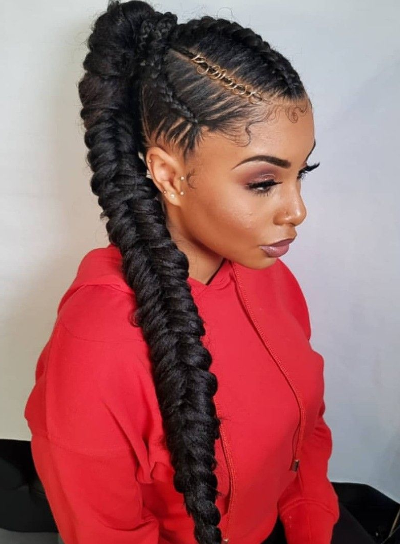 Braided Ponytail With Popular Micro Braids Hairstyles In Side Fishtail Braid (View 9 of 20)