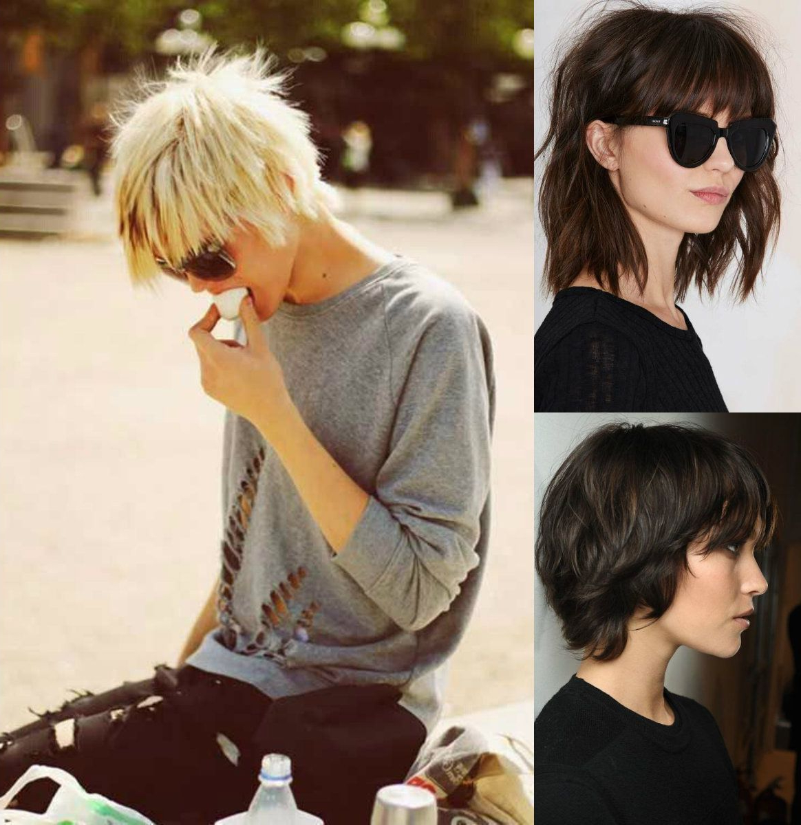 Cortes De Within Well Liked Short Shaggy Pixie Hairstyles (View 5 of 20)