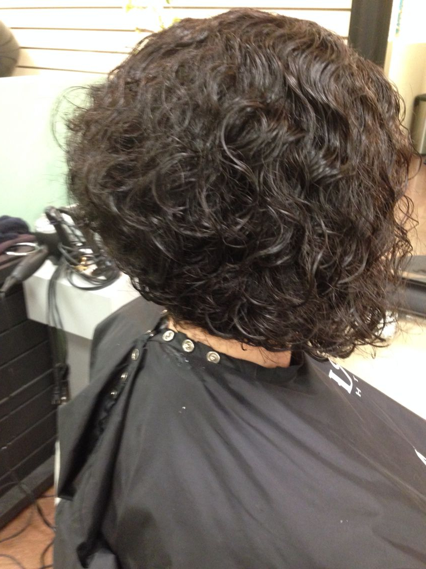 Curly Hair With Most Up To Date Cute Short Curly Bob Hairstyles (View 10 of 20)