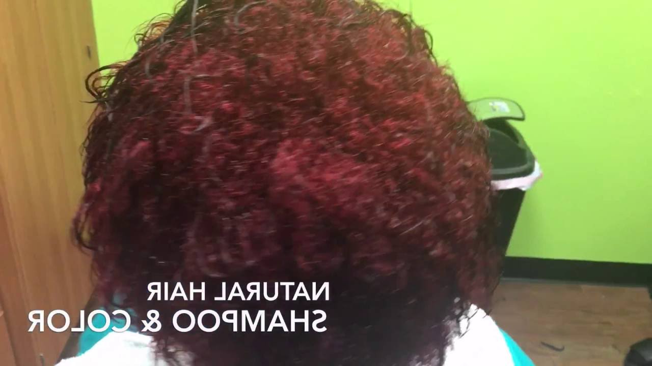 Erica Marie: Page Boy Bob Haircut On Natural Hair – Youtube In Well Liked Pageboy Maroon Red Pixie Haircuts (View 10 of 20)
