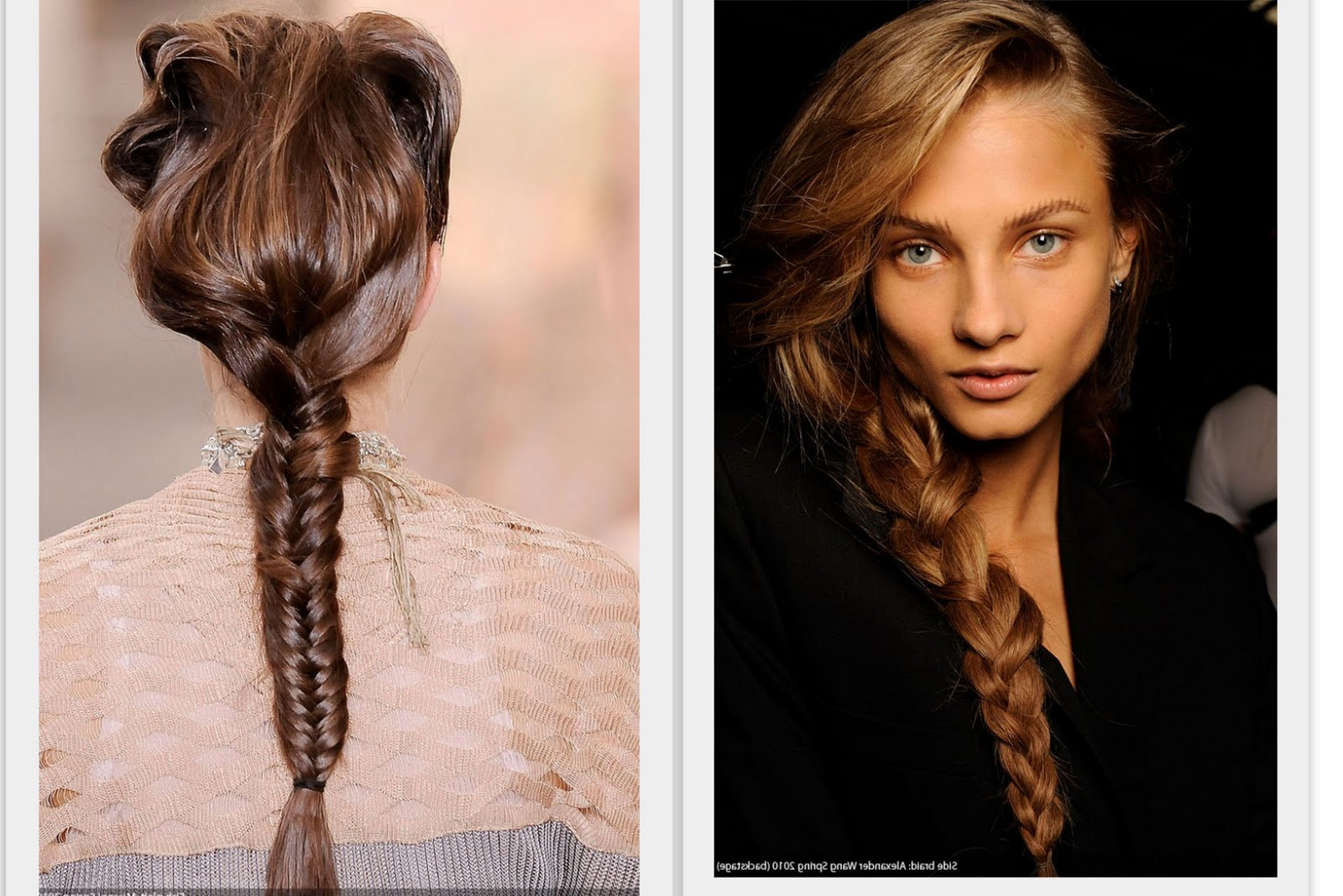 Fishtail Braid Hairstyles (Gallery 17 of 20)