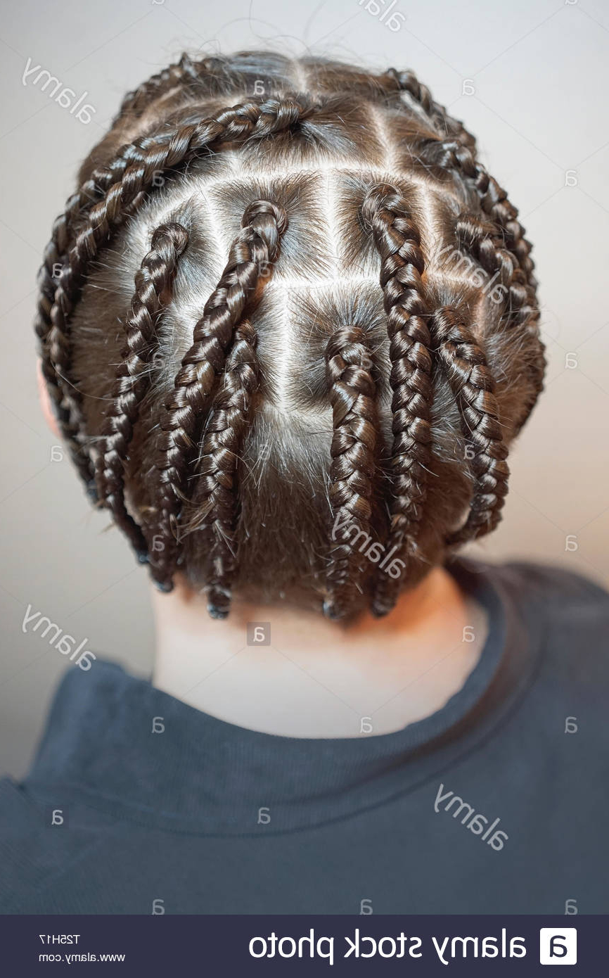 Men's Hairstyle From Thin Braids, Men's Hair, Pigtails Regarding Well Known Thick Plaits And Narrow Cornrows Hairstyles (View 10 of 20)