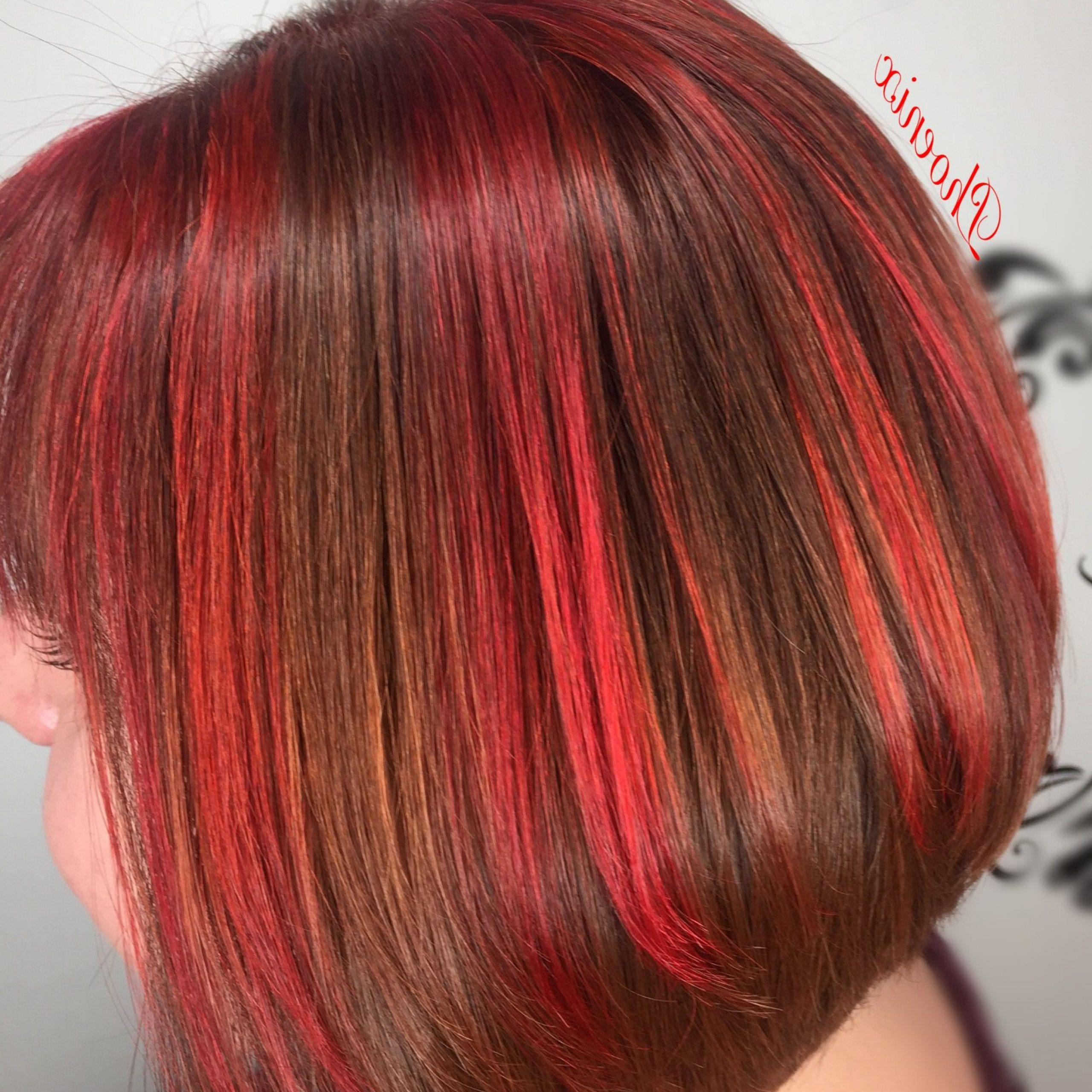 Most Popular Bright Red Bob Hairstyles With Regard To Bright Reds & Coppers Graduated Bob Red Hair Bob (View 4 of 20)