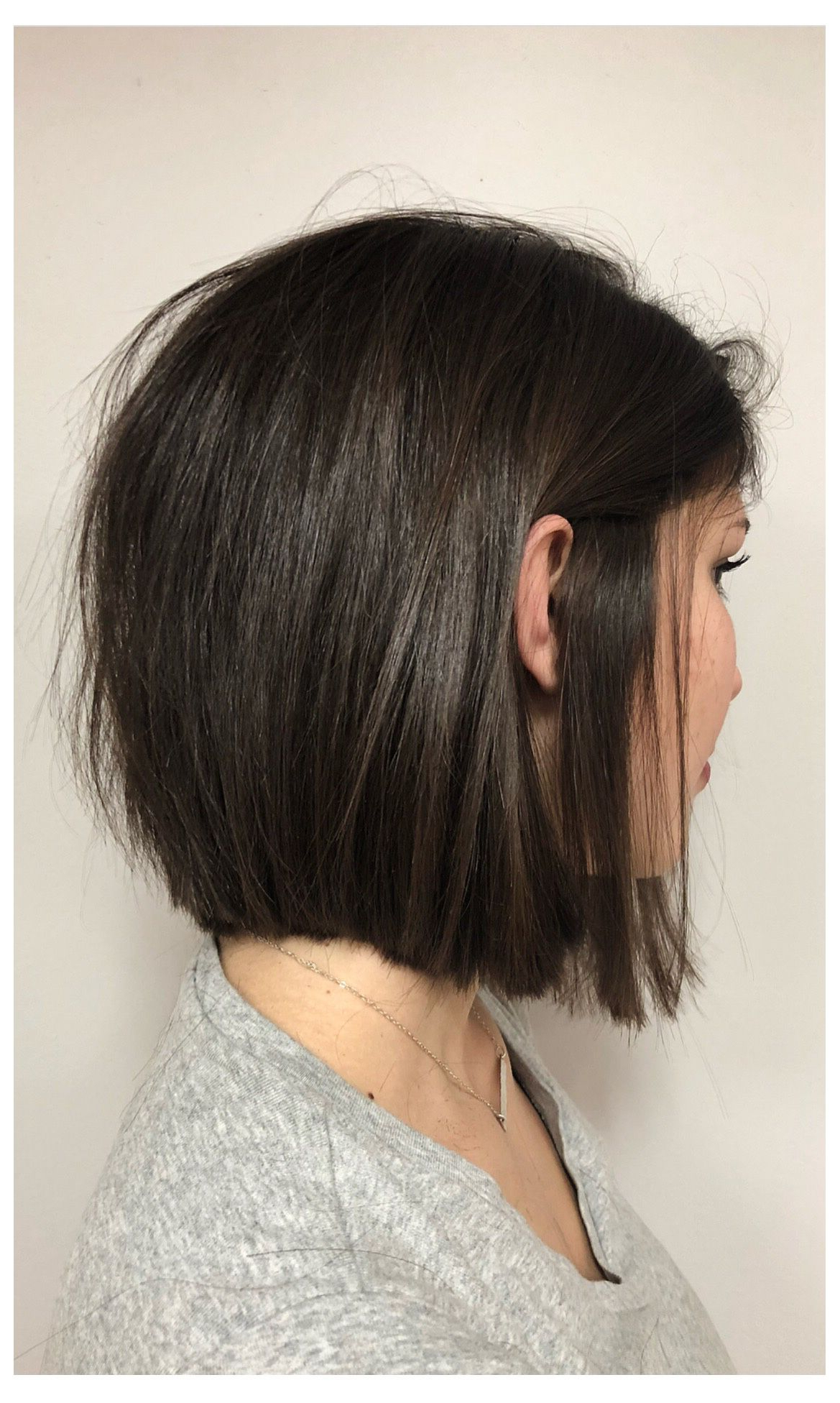 Most Recently Released Rounded Sleek Bob Hairstyles With Minimal Layers Inside Pin On Hair (View 14 of 20)
