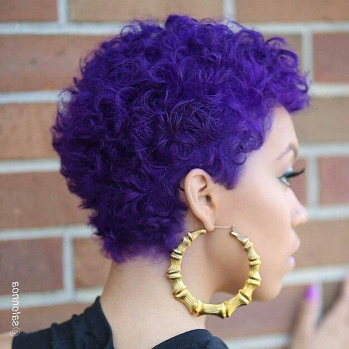 Newest Plum Brown Pixie Haircuts For Naturally Curly Hair With Hairstyle Ideas For Short Natural Hair – Essence (View 10 of 20)