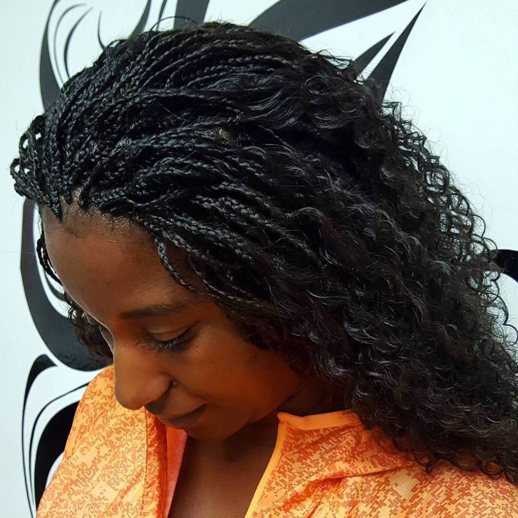 Recent Micro Braids Hairstyles In Side Fishtail Braid Intended For 40 Ideas Of Micro Braids And Invisible Braids Hairstyles (View 15 of 20)
