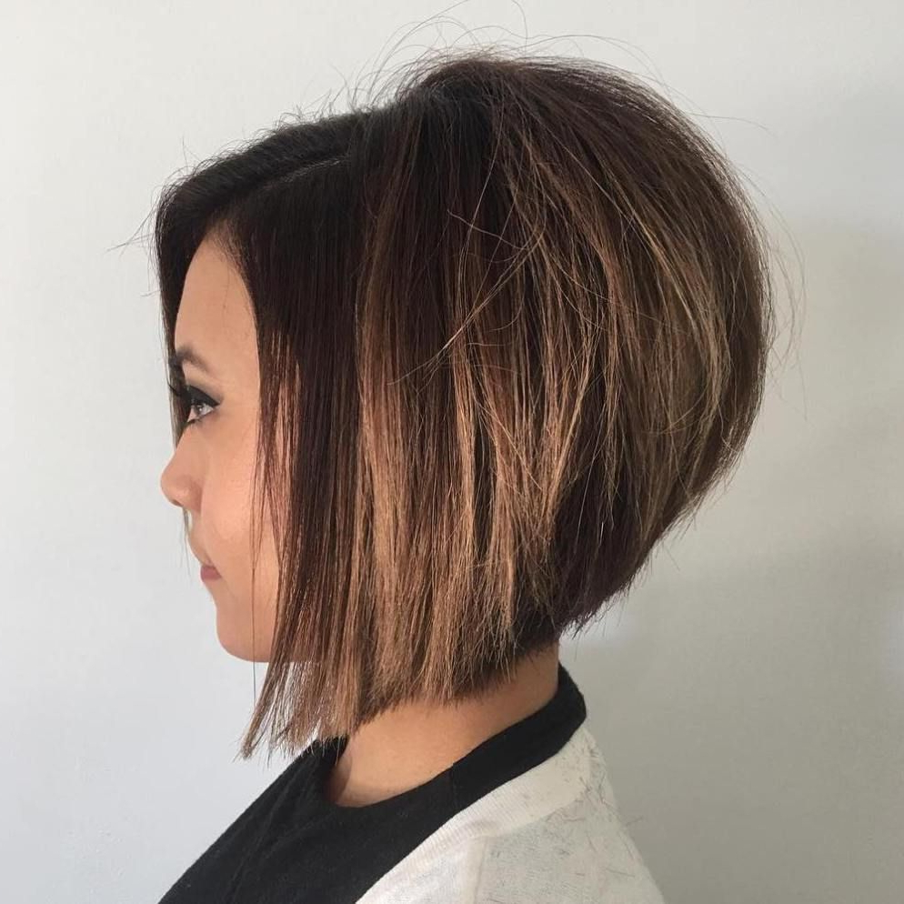 Stacked Haircuts, Bobs For Thin Hair For Newest Graduated Angled Bob Hairstyles (View 17 of 20)