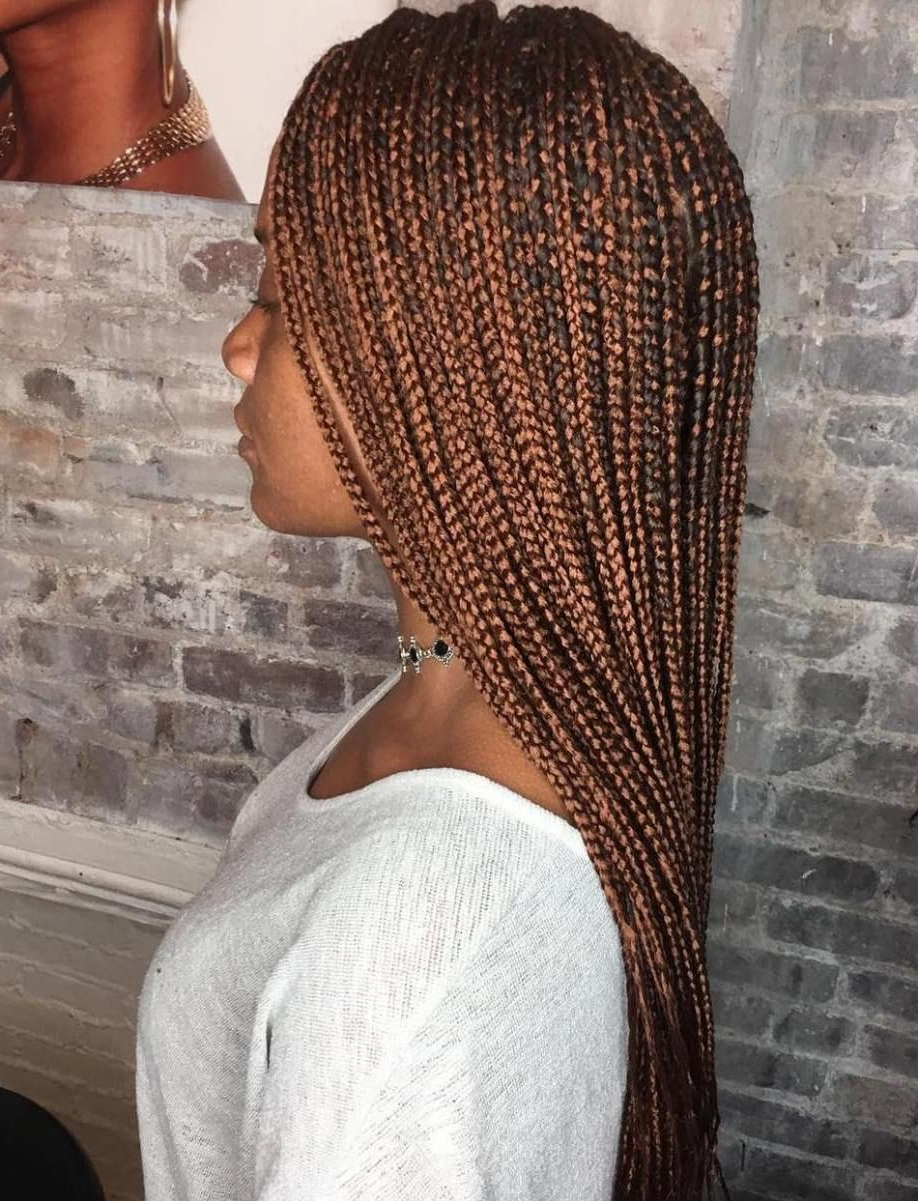 Trendy Micro Braids Hairstyles In Side Fishtail Braid Regarding 40 Ideas Of Micro Braids And Invisible Braids Hairstyles In (View 17 of 20)