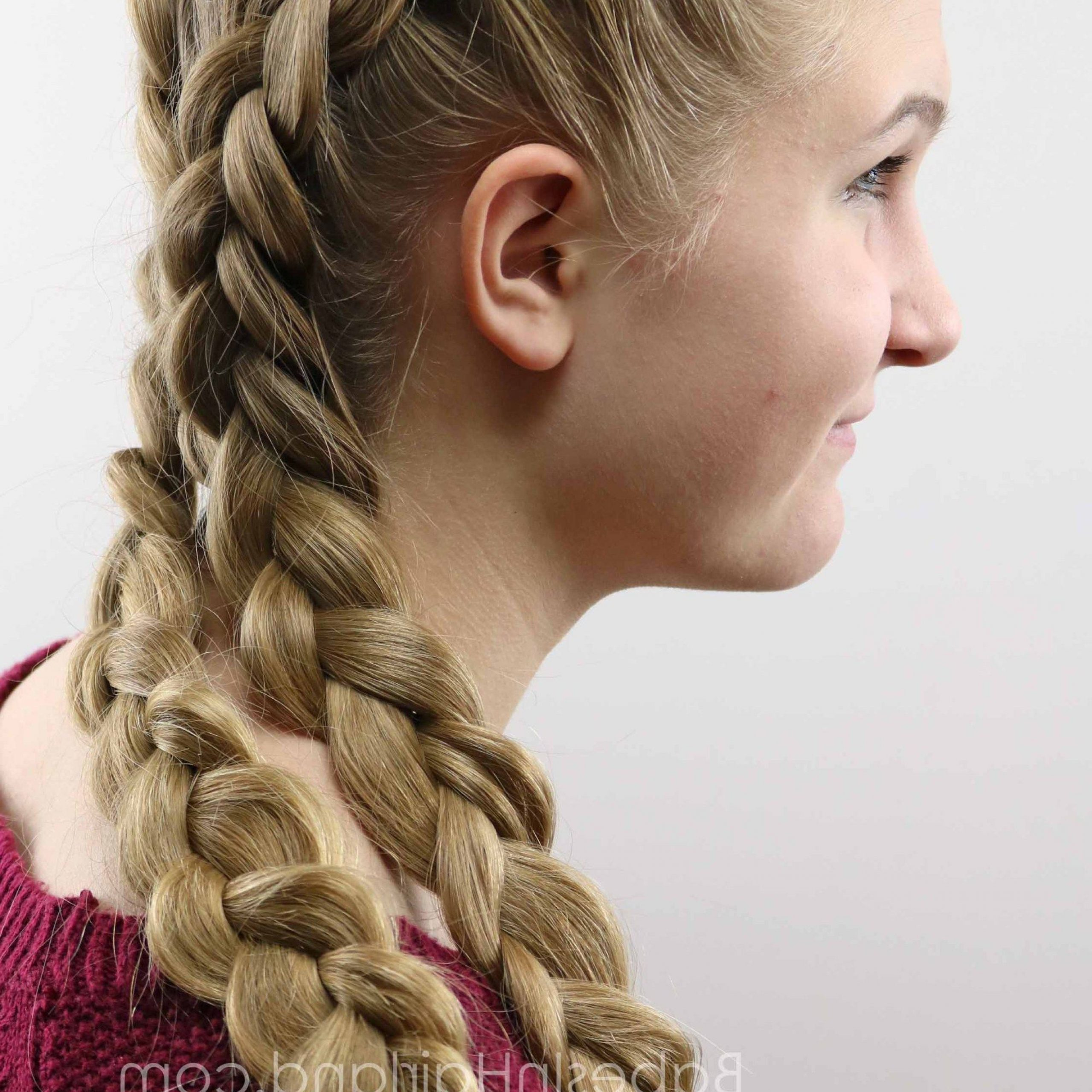 Well Known Asymmetrical French Braid Hairstyles Within 17+ Ethereal Summer Hairstyles Ideas (Gallery 7 of 20)
