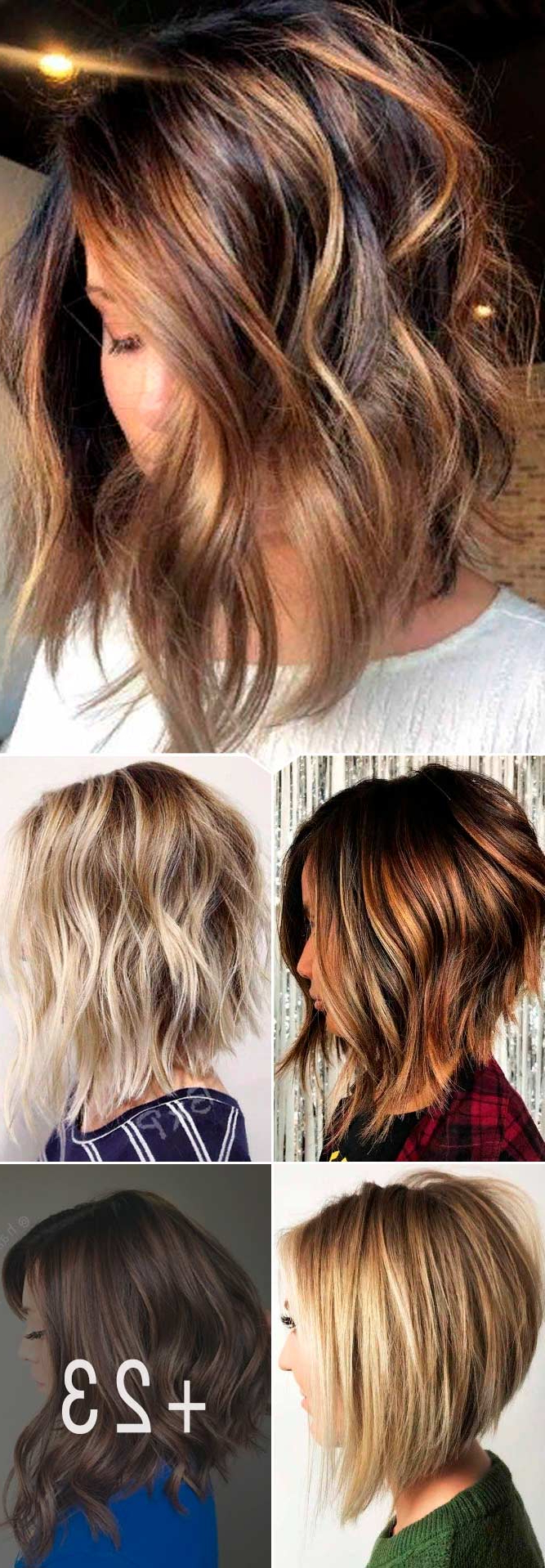 77 Ideas Of Inverted Bob Hairstyles To Refresh Your Style With Regard To Most Recently Released Long Feathered Bangs Hairstyles With Inverted Bob (View 10 of 20)