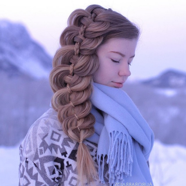 18 Stunning Braided Hairstyles You Will Love – Pretty Designs Intended For Recent Loose Double Braids Hairstyles (View 2 of 20)