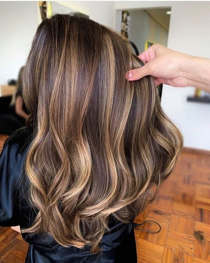 20 Ideas Of Honey Balayage Highlights On Brown And Black With Recent Honey Kissed Highlights Curls Hairstyles (View 2 of 20)