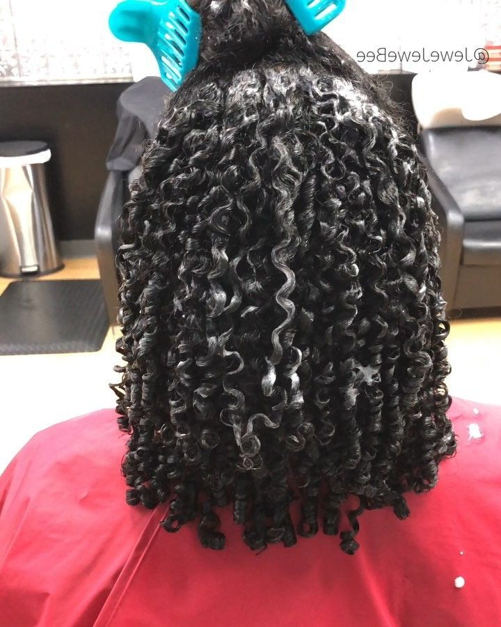 2017 Dark Red Highlighted Finger Coils Hairstyles Throughout Pin On Vaseline Hair Growth (View 18 of 20)
