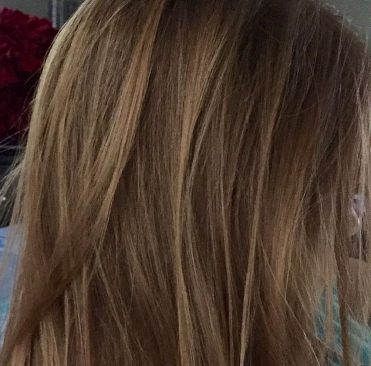 Featured Photo of Honey Kissed Highlights Curls Hairstyles