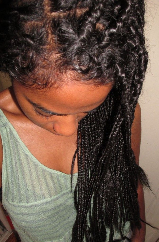 Best And Newest Boho Rose Braids Hairstyles Regarding Natural Belle: The Boho Box Braids (View 14 of 20)