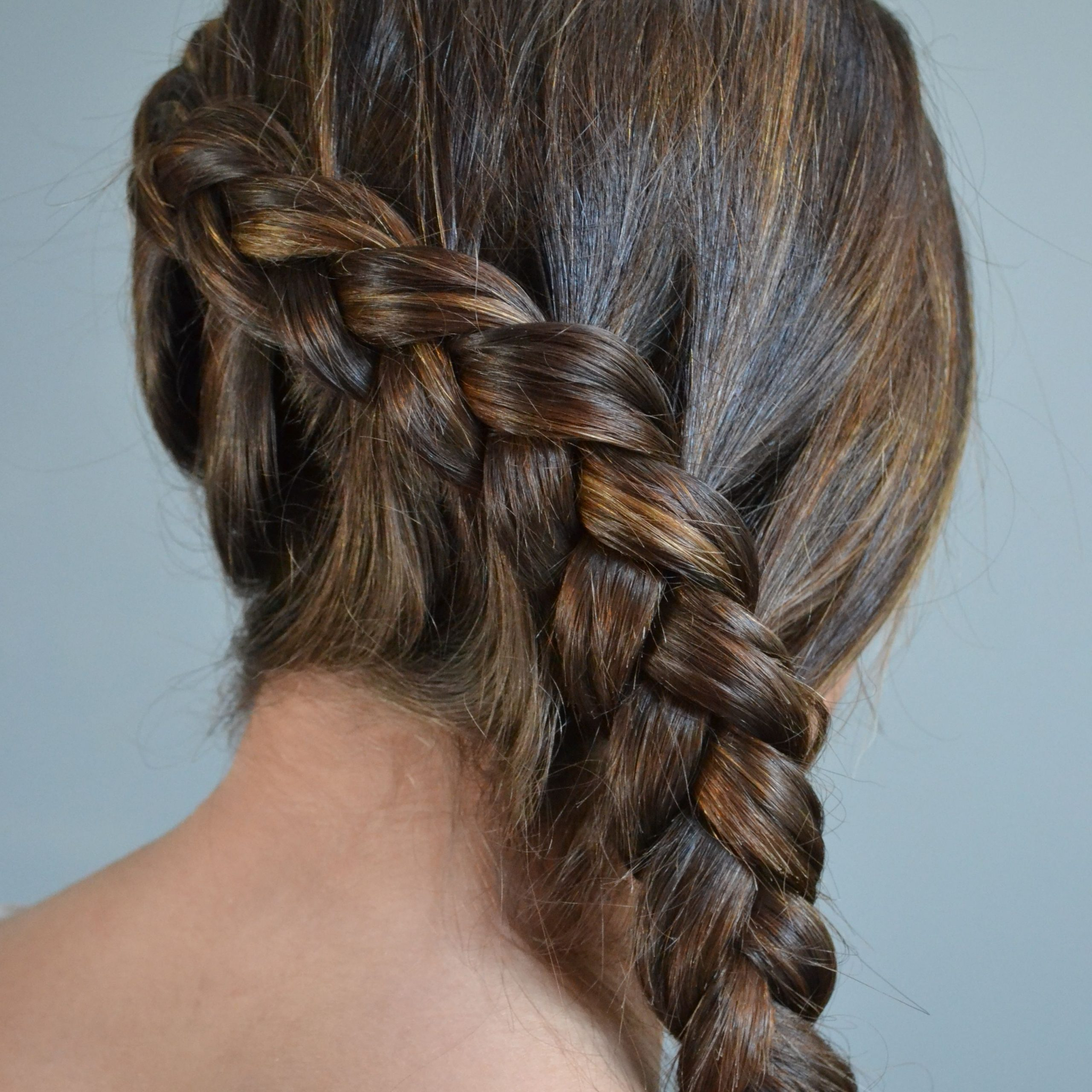 Best And Newest Five Dutch Braid Ponytail Hairstyles With Side Dutch Braid (View 5 of 20)
