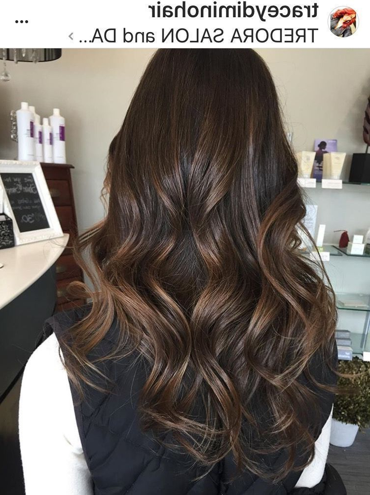 Chocolate Brown Hair Color, Brunette , Shiny Hair, Long For 2018 Deep Chocolate Curls Hairstyles With High Contrast Highlights (View 14 of 20)
