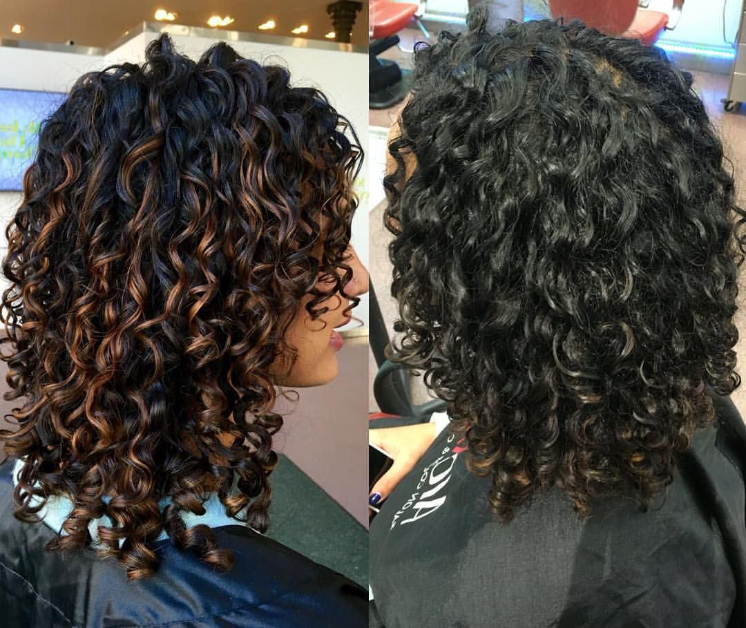 Fashionable Painted Golden Highlights On Brunette Curls Hairstyles Inside 718 Likes, 47 Comments – Rachael (@rachael Devacurl) On (View 8 of 20)