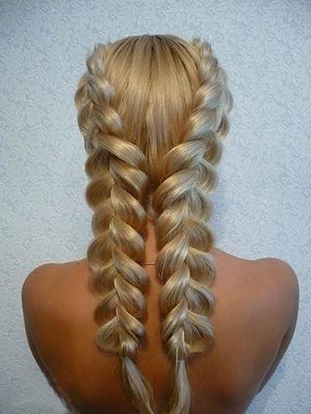 Hairstyles How To Inside Well Liked Double Dutch Braids Hairstyles (View 12 of 20)