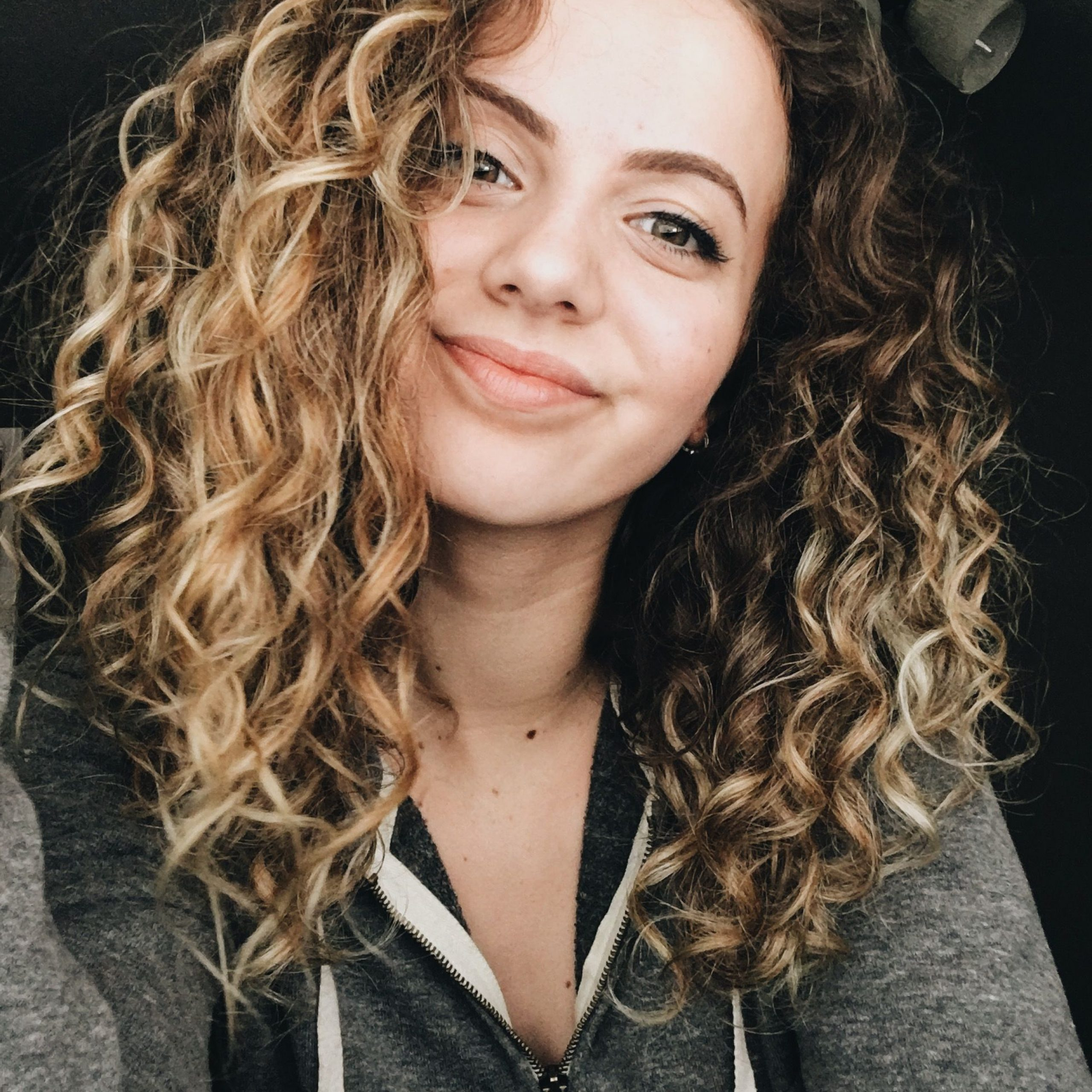 Highlights Curly Hair, Curly Hair Styles (View 7 of 20)