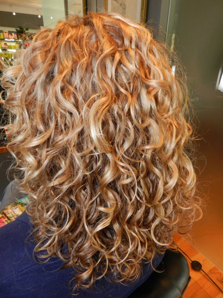 Most Recent Medium Length Curls Hairstyles With Caramel Highlights For Medium Length, Blonde Curls! Highlights, Lowlights, Dry (View 17 of 20)