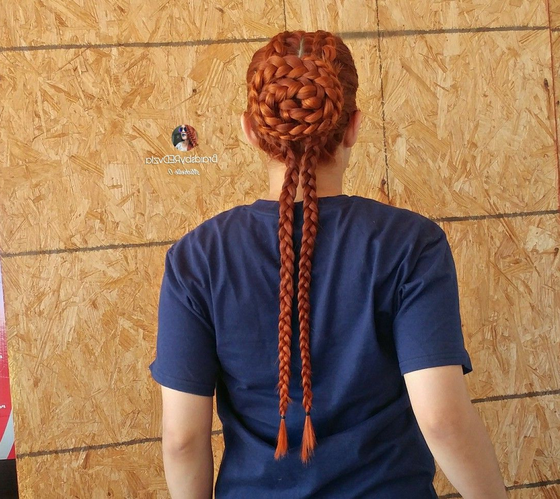 Newest Folded Braided Updo Hairstyles For Braided Hairstyles Imagebraidsbyredvzla On (View 13 of 20)