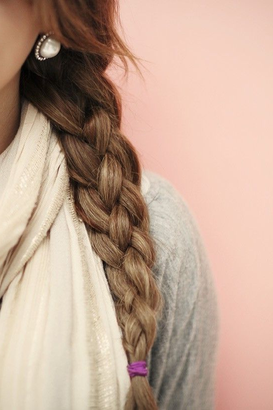 Plaits Hairstyles Within Most Up To Date Four Strand Braid Hairstyles (View 7 of 20)