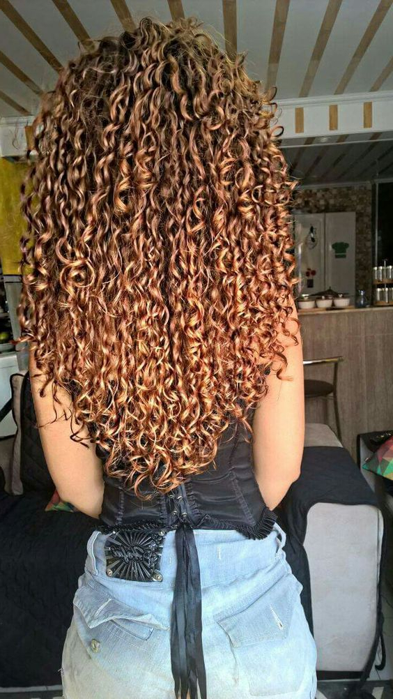 Short And Long Layered Curly Hairstyles Within Recent Tight Chocolate Curls Hairstyles With Caramel Touches (View 16 of 20)