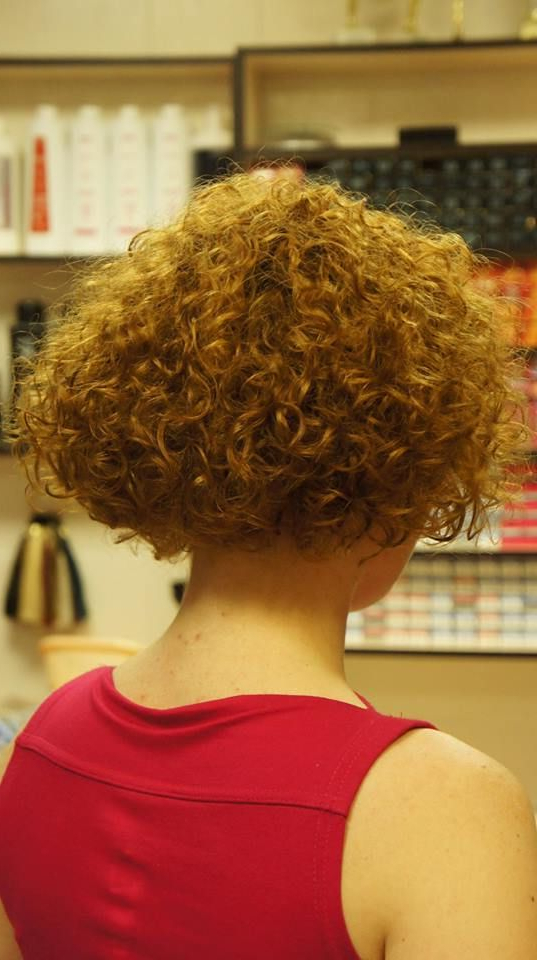 Short Curly Haircuts, Bobs In Best And Newest Tight Chocolate Curls Hairstyles With Caramel Touches (View 17 of 20)