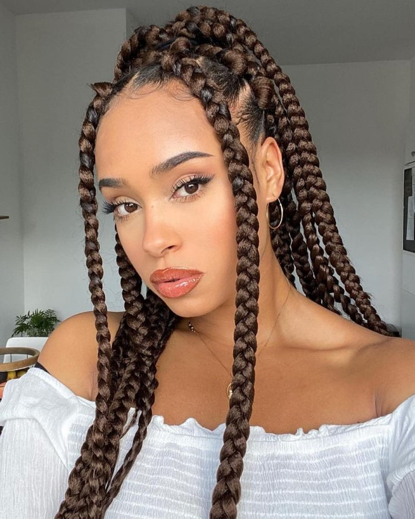 Stunning And Beautiful Box Braids Hairstyles To Wow You Pertaining To Best And Newest Braided Beautiful Updo Hairstyles (View 11 of 20)