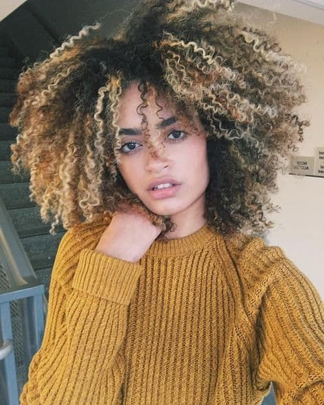 Well Known Painted Golden Highlights On Brunette Curls Hairstyles Inside 7 Gorgeous Curly Brown Hairstyles With Blonde Highlights (View 10 of 20)