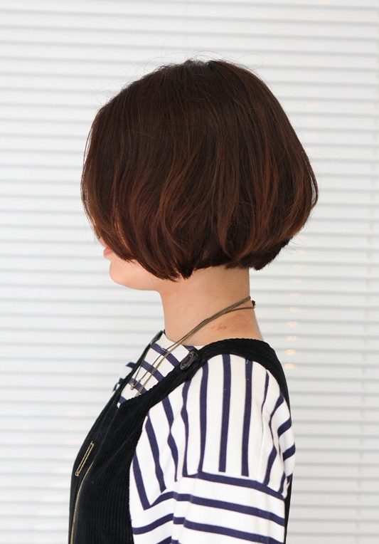 2017 Sleek Coif Hairstyles With Double Sided Undercut Regarding Korean Hairstyle 2013: Pretty Center Parted Bob Haircut (View 14 of 20)