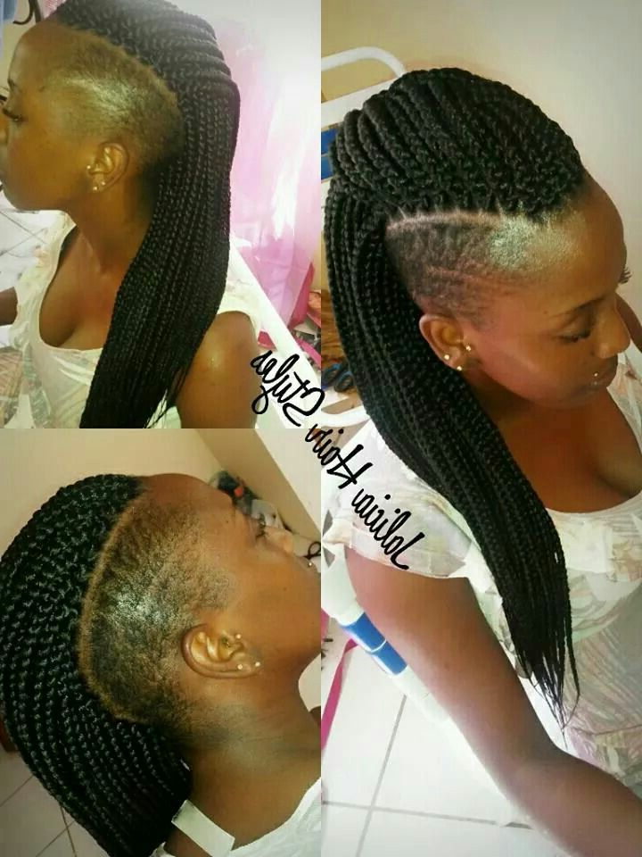 Braids With Shaved Sides, Shaved Side With Regard To Popular Coral Mohawk Hairstyles With Undercut Design (View 18 of 20)