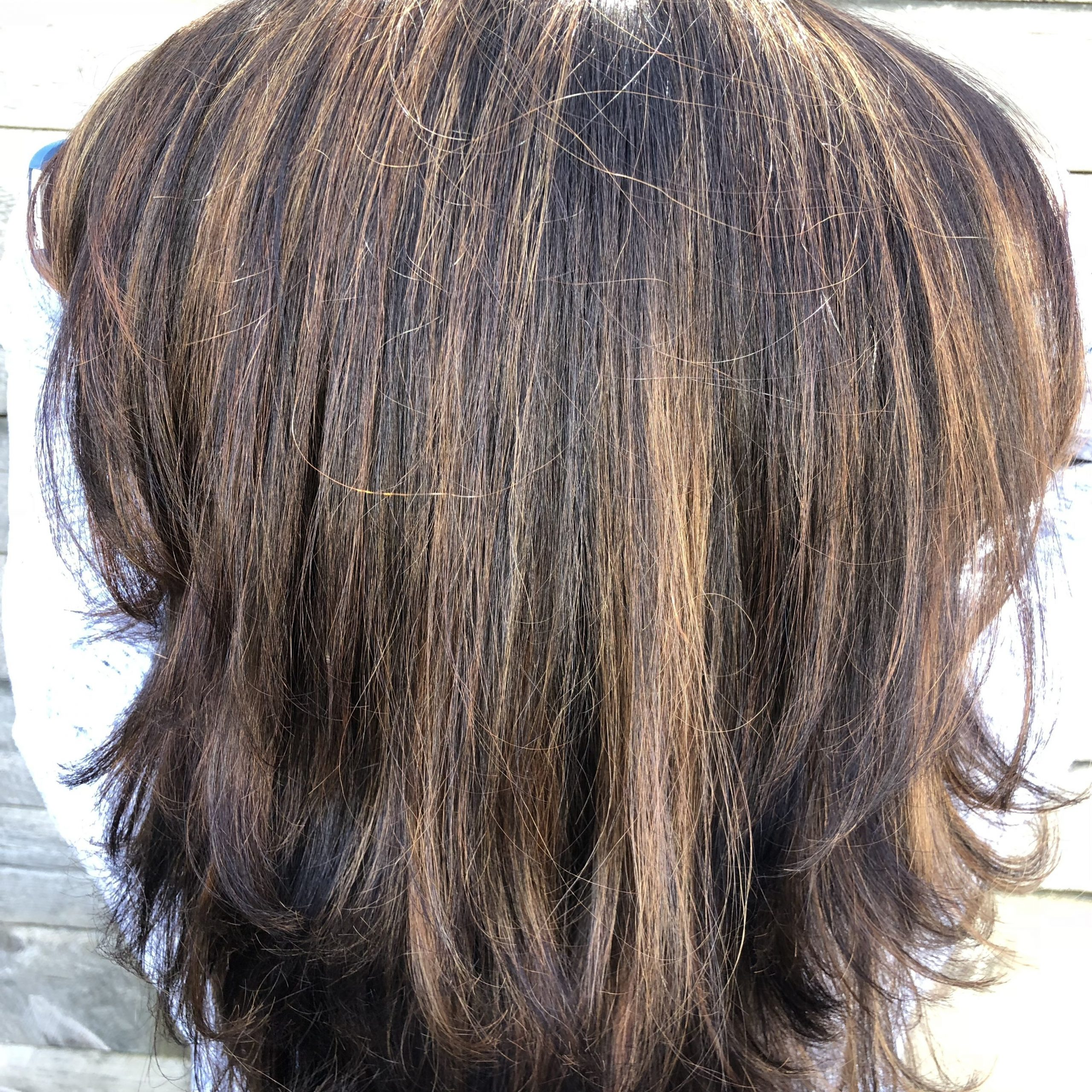 Brunette With Subtle Highlights | Red Hair With Highlights Throughout Natural Brown Hairstyles With Barely There Red Highlights (View 12 of 20)
