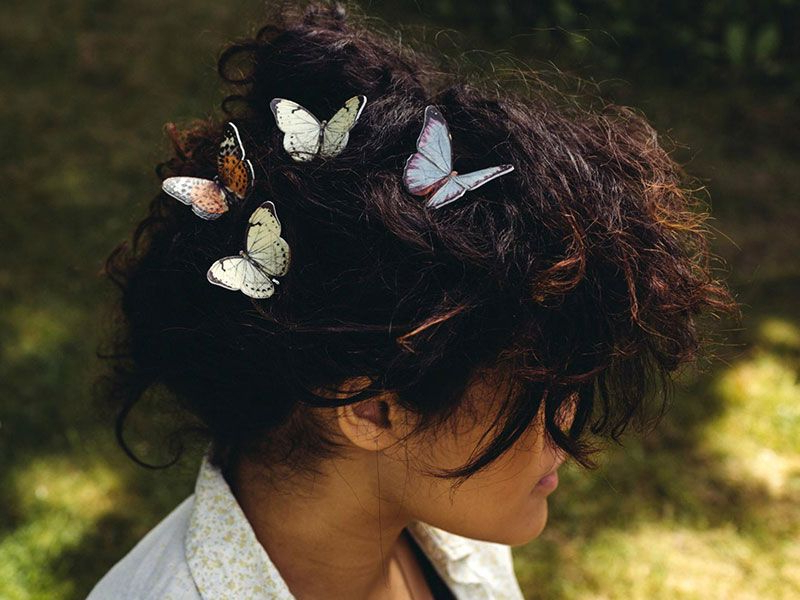 Butterfly Hair, Butterfly Hair Clip With Preferred Butterfly Clips Hairstyles (View 11 of 20)