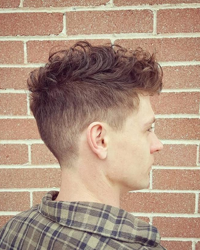 Cool Curly Throughout Well Known Contrasting Undercuts With Textured Coif (View 9 of 20)