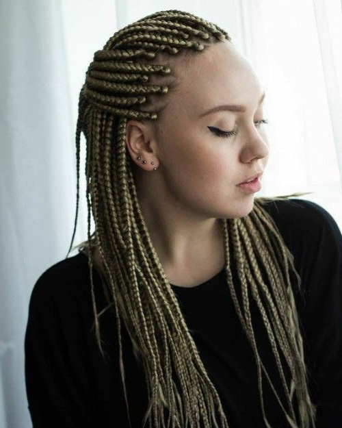 Cute White Girl Box Braids Hairstyles Ideas To Boost Your Intended For Famous Tiny Braids Hairstyles (View 18 of 20)