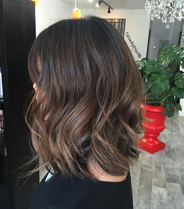 Image Result For Balayage | Medium Hair Styles, Thick Hair Pertaining To Short Brown Balayage Hairstyles (View 14 of 20)